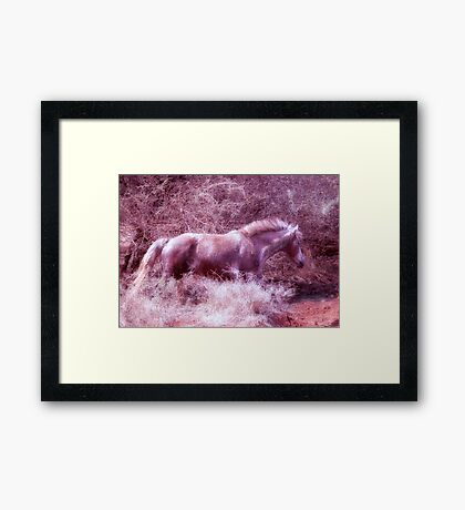 """REALITY CHANGED INTO A """"FANTASY"""" Framed Print"""