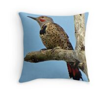 Red-Shafted ~ Northern Flicker  Throw Pillow