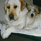 Two good buddies.  by Meg Hart