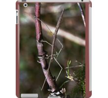 Stick insect Phasme story 15 VERSION 3 (c)(h) by Olao-Olavia / Okaio Créations fz 1000 iPad Case/Skin