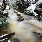 Winter at Crator Creek, Cradle Mountain National Park, Tasmania, Australia by Michael Boniwell