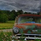 Poor Chevy, Left for Dead on the Side of the Road by lizalady