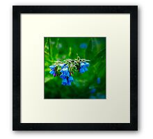 Blue & Green Framed Print