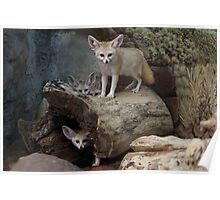 Awesome Fennec Fox Poster