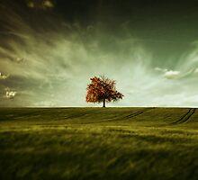 Crude Autumn by swin