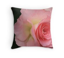 Folding In All Directions Throw Pillow