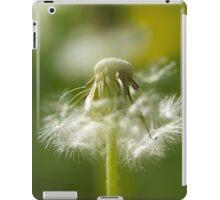 Lighter Than Air iPad Case/Skin