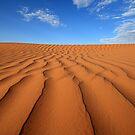 Sand Dune Ripples, Simpson Desert, Australia by David Jamrozik