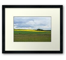 A splash of yellow on a grey day Framed Print