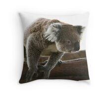 Curious koala Throw Pillow