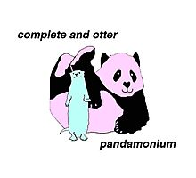 Complete and Otter Pandamonium Photographic Print