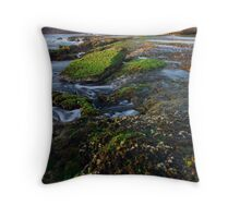 Continental Shift Throw Pillow