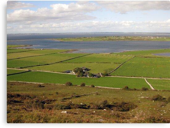 Galway Bay view by John Quinn