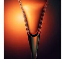 Fluid Design by Nico  van der merwe