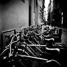 Everybody's ride. by resistiveloss