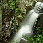 Burden Falls by David Allen