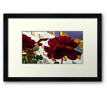 White Lattice Blood Rose Framed Print