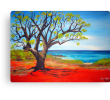 Broome Views - western australia Canvas Print