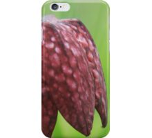 It's raining fritillaries iPhone Case/Skin