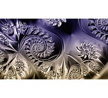 Metallic coils Photographic Print