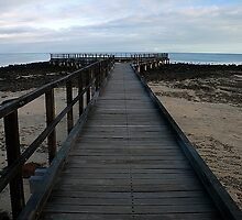 Hamelin Pool Boardwalk by Gary Wooldridge