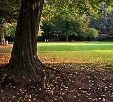 Heidelberg in Autumn, Germany by Francesco Carucci