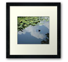 It's a lazy afternoon... Framed Print