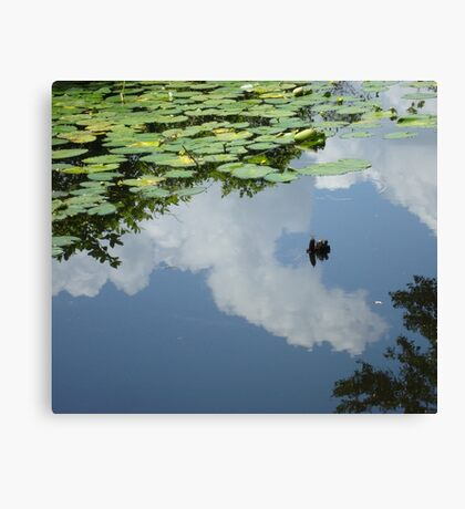 It's a lazy afternoon... Canvas Print