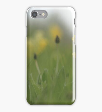 Cowslip emerges from the green green grass iPhone Case/Skin
