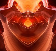Antelope Abstract by Steve  Taylor
