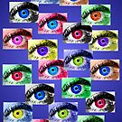 The Eyes Have It! by colleen e scott