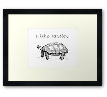 I Like Turtles Framed Print