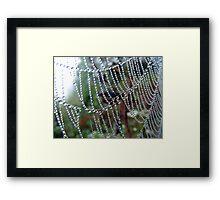 A String of Beads! Framed Print