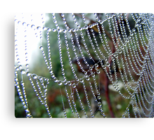 A String of Beads! Canvas Print