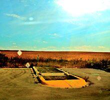 Field of Dreams by Jhon LeBaron