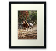 Charging Home Framed Print