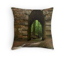 poinsett bridge Throw Pillow