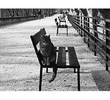 """""""6.00 AM en Provence"""" Photographic Print"""