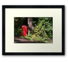 Phone Box In Forest Framed Print