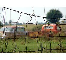 Cars And Trucks Rusting Away Photographic Print