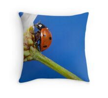 Lady in orange Throw Pillow