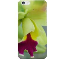 'picture perfect' Orchid 2 iPhone Case/Skin