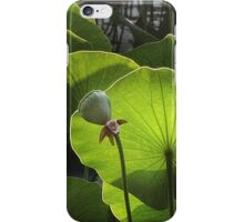 Sounds of Silence iPhone Case/Skin