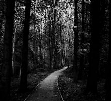 The Loneliest Path by Ladymoose