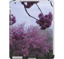 Cherry blossom time iPad Case/Skin