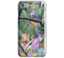 Guess who drew the short straw to tell him - move over lard arse......? iPhone Case/Skin