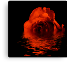 Reflection of a Bronze Rose Canvas Print