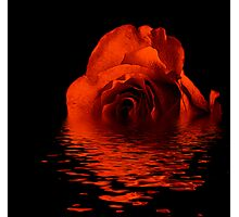 Reflection of a Bronze Rose Photographic Print