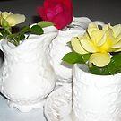 Roses in Teacup by debbiedoda