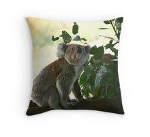 Looking up koala Throw Pillow